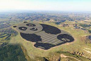 Изграждат фотоволтаична система с формата на панда в Китай