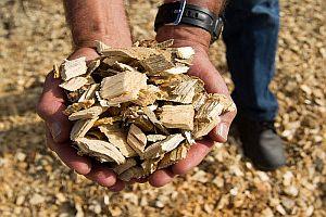 Организират семинар за създаване на центрове за търговия с биомаса
