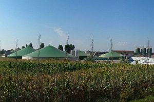 Проучват потенциала на биогаза като източник на чиста енергия